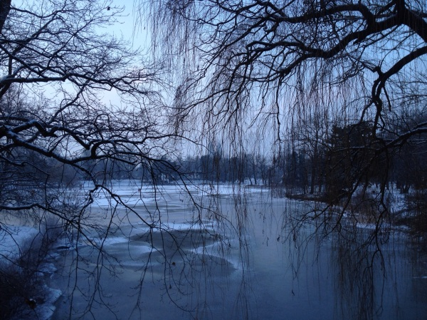 Winter walks in Magdeburg Germany Stadtpark